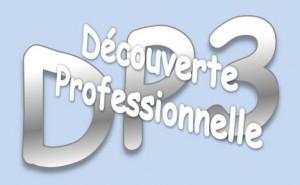 LogoDP3